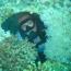 Reef Divers